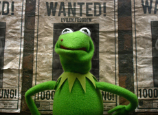 The Muppets: Most Wanted live launch